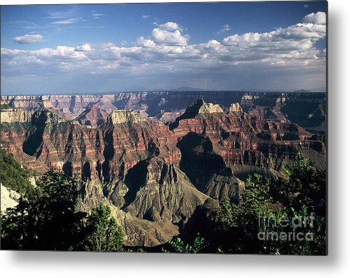 Grand Canyon; National Parks Metal Print featuring the photograph North Rim by Kathy McClure