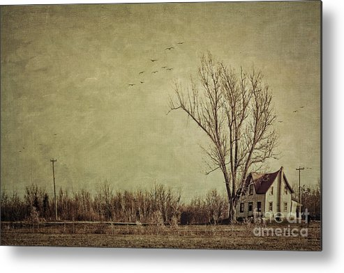 Aged Metal Print featuring the photograph Old Rural Farmhouse With Grunge Feeling by Sandra Cunningham