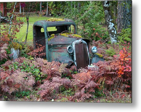 Cars Metal Print featuring the photograph Old Rusty Truck I C1000 by Mary Gaines