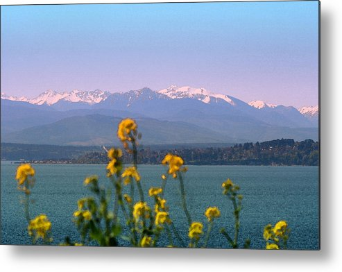 Olympics Metal Print featuring the photograph Olympic Mtn. M1001 by Mary Gaines