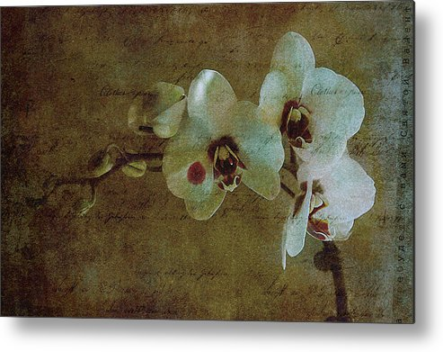 Orchid Metal Print featuring the photograph Orchid by Inesa Kayuta