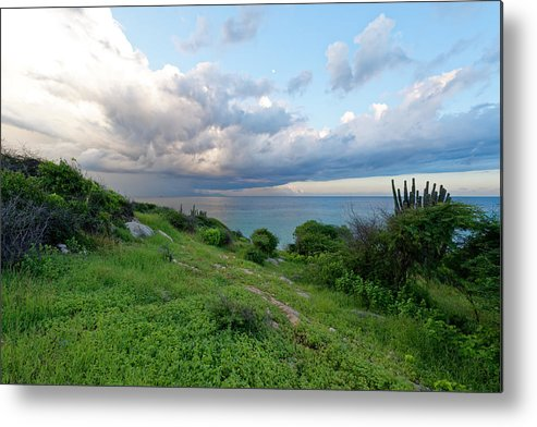 Landscape Metal Print featuring the photograph Outlook by Bryan Smith