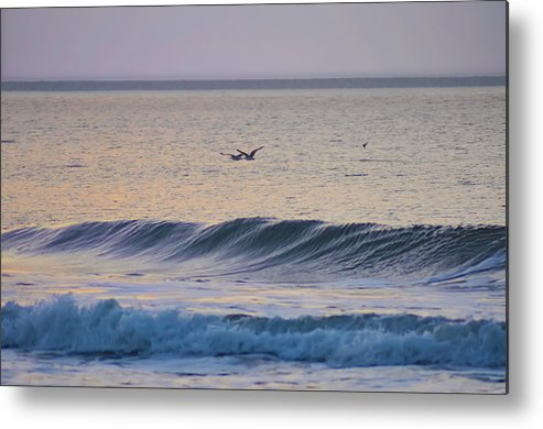 Seagulls Metal Print featuring the photograph Over The Waves by Bill Cannon