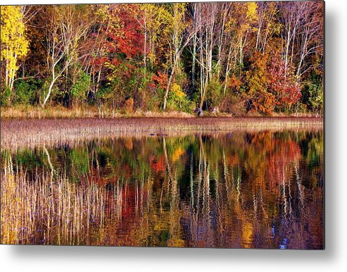 Autumn Metal Print featuring the photograph Paint Like Nature by Mitch Cat