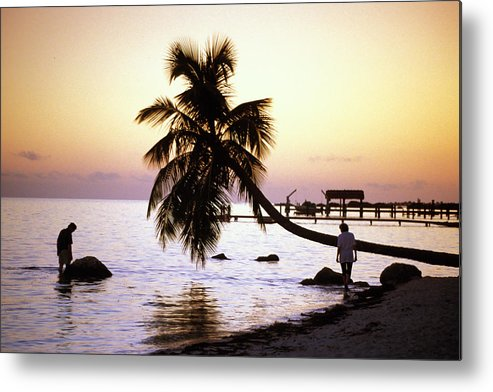 Sunset Metal Print featuring the photograph Palm At The Moorings by Carl Purcell