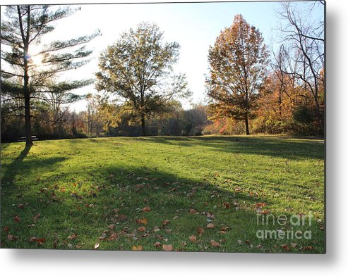 Metal Print featuring the photograph Park Seen by David King