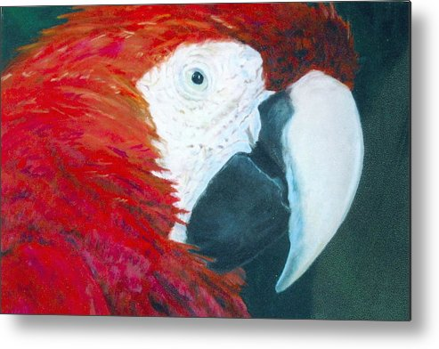 Parrot Metal Print featuring the painting Parrot by Deena Greenberg