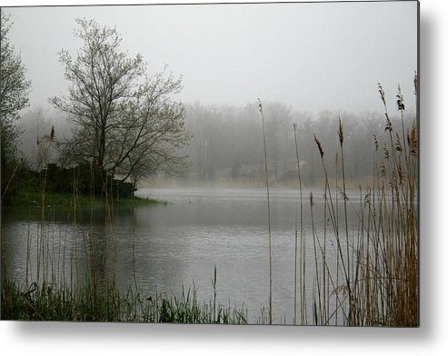 Landscape Metal Print featuring the photograph Peaceful Calm by Erika Lesnjak-Wenzel