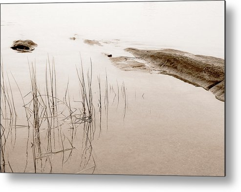 Water Metal Print featuring the photograph Peaceful Moment by Linda McRae
