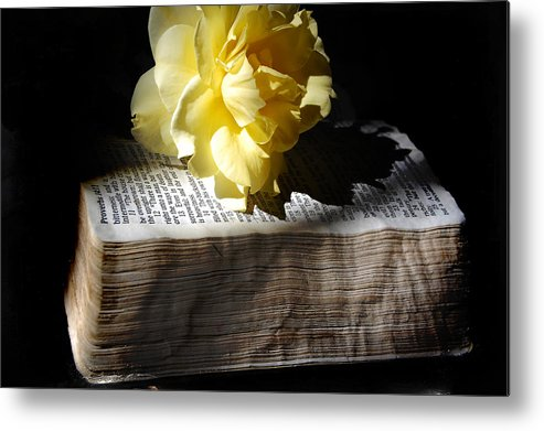 Book Metal Print featuring the photograph Peaceful Reading by Rozalia Toth