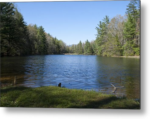 Metal Print featuring the photograph Peaceful Thought by Greg Burnside