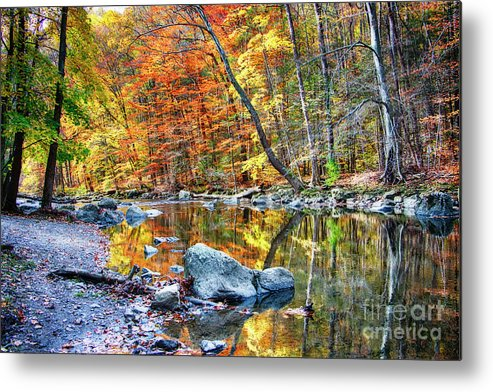 Ken Lockwood Gorge Metal Print featuring the photograph Peak Fall Foliage At The Black River by George Oze