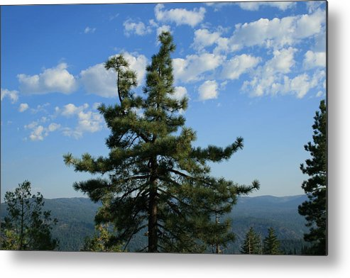 Veiw Metal Print featuring the photograph Perfect View by Joshua Sunday