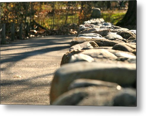 Forest Metal Print featuring the photograph Perspective 2 by Robert Joseph