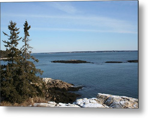 Landscape Metal Print featuring the photograph Pine Coast by Doug Mills