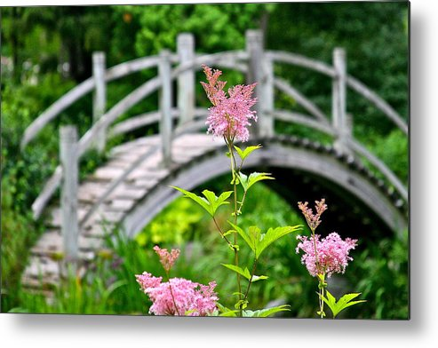 Bridge Metal Print featuring the photograph Pink Flower by Robert Joseph
