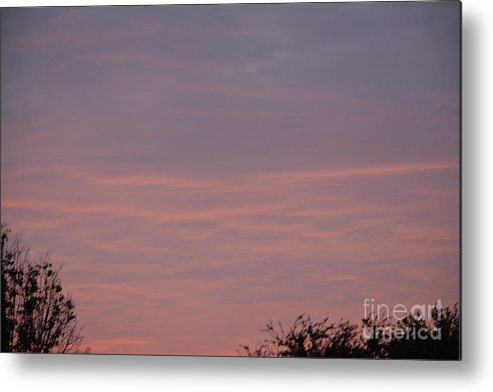 Pink In The Morning Sky Metal Print featuring the photograph Pink In The Morning Sky by Ruth Housley