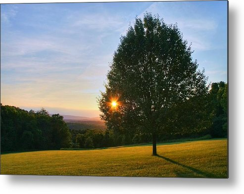 Landscape Metal Print featuring the photograph Poetry Of Nature by Mitch Cat