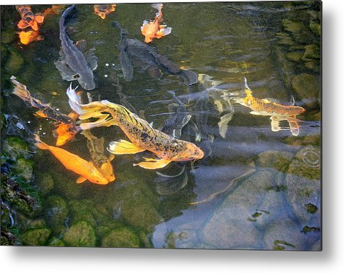 Digital Painting Metal Print featuring the painting Queen Of The Pond by Ron Morecraft