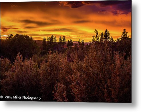 Sunset Metal Print featuring the photograph Quilted Orange Skies by Penny Miller