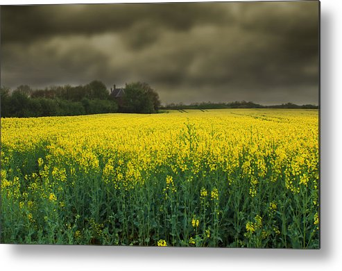 Beautiful Metal Print featuring the photograph Rain Is On Its Way by Svetlana Sewell