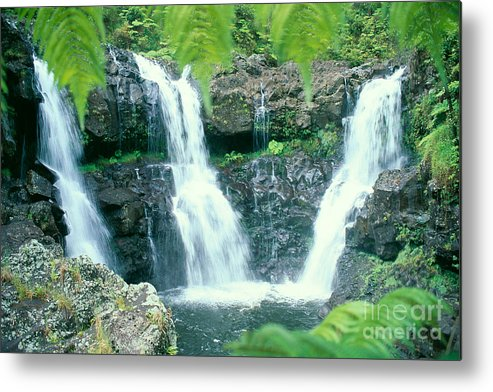 Big Metal Print featuring the photograph Rainforest Waterfalls by Peter French - Printscapes