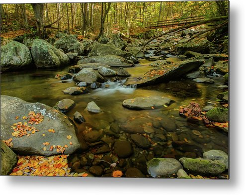 2016 Metal Print featuring the photograph Ramsey Cascades Trailhead by Charlie Choc