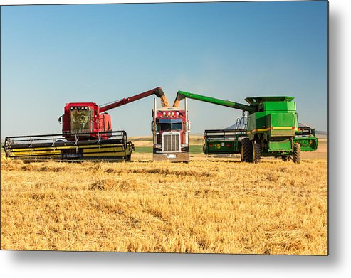 Two Metal Print featuring the photograph Red And Green by Todd Klassy