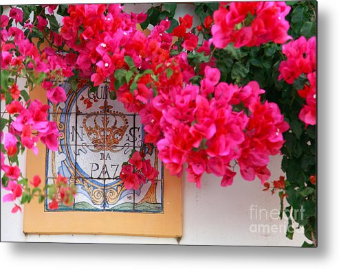 Bougainvilleas Metal Print featuring the photograph Red Bougainvilleas by Gaspar Avila