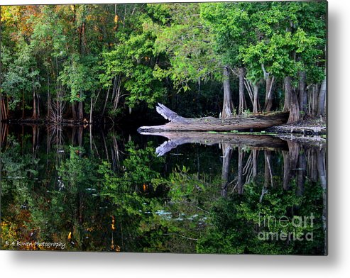 Reflection Metal Print featuring the photograph Reflection Off The Withlacoochee River by Barbara Bowen