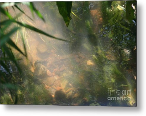 Water Metal Print featuring the photograph Reflections 3 by Eric Irion
