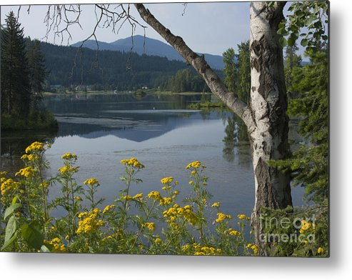 Landscape Metal Print featuring the photograph Reflections Of Summer by Idaho Scenic Images Linda Lantzy