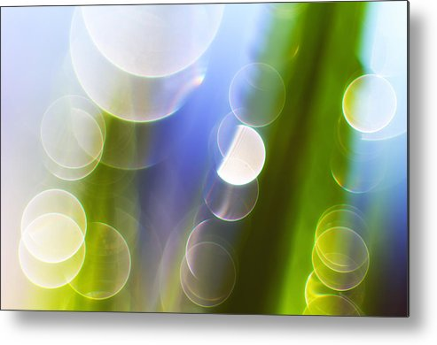 Grass Metal Print featuring the photograph Reflections by Silke Magino
