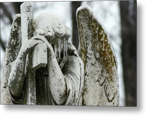 Metal Print featuring the photograph Rest by Off The Beaten Path Photography - Andrew Alexander