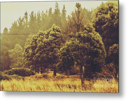 Nature Metal Print featuring the photograph Retro Rural Tasmania Scene by Jorgo Photography - Wall Art Gallery