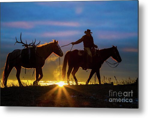 America Metal Print featuring the photograph Returning Home by Inge Johnsson