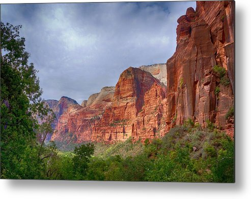 Ann Keisling Metal Print featuring the photograph Rising Up by Ann Keisling