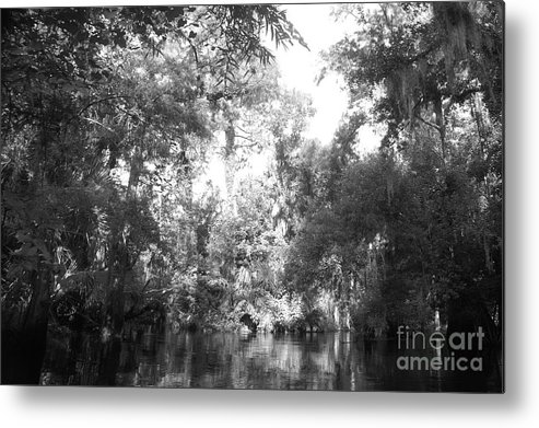 Black Metal Print featuring the photograph River Wooded by Jack Norton