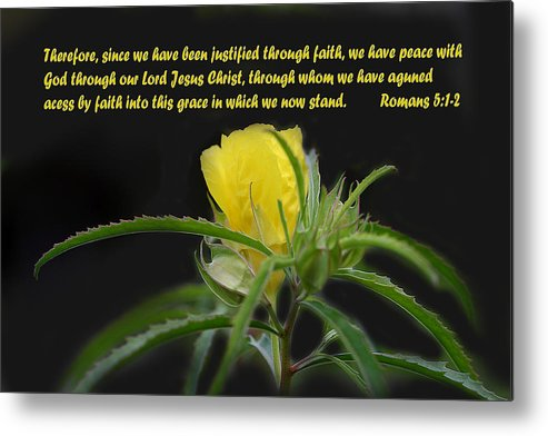 Scripture Metal Print featuring the photograph Romans 5 Verses 1 2 Yellow Wildflower by Linda Phelps