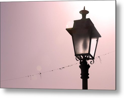 Photographer Metal Print featuring the photograph Rose Light by Jez C Self