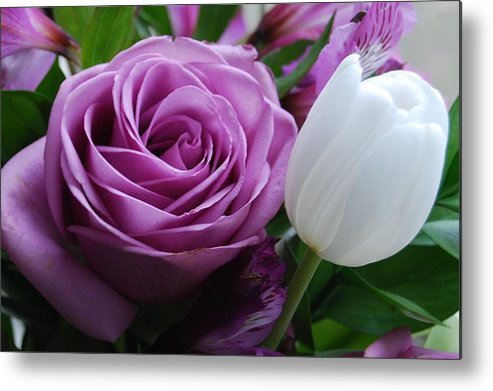Purple Metal Print featuring the photograph Rose With Tulip by Nancy Trevorrow