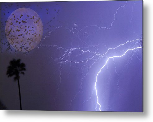 Lightning Metal Print featuring the photograph Running From The Storm by James BO Insogna