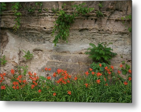 Sandstone Lilies Metal Print featuring the photograph Sandstone Lilies by Dylan Punke