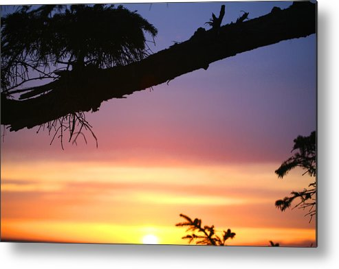 Sunset Metal Print featuring the photograph Sequim Sunset Ss 2007 by Mary Gaines