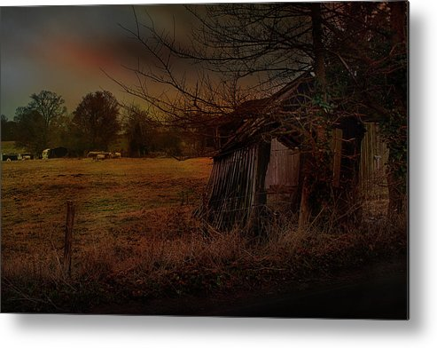 Sheep And Shed Metal Print featuring the photograph Sheep And Shed by Dave Godden