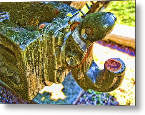 Metal Print featuring the photograph Sherman by Nick Roberts