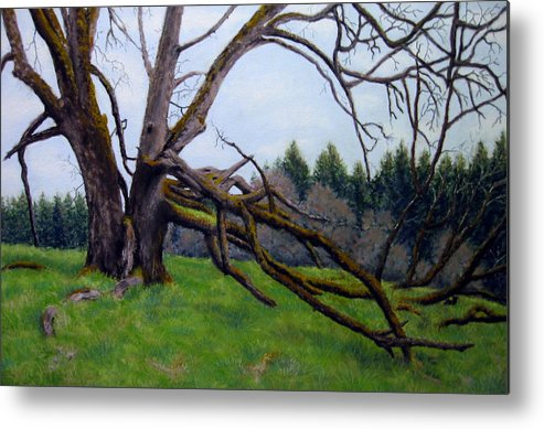 Landscape Metal Print featuring the painting Signature Oak by Carl Capps