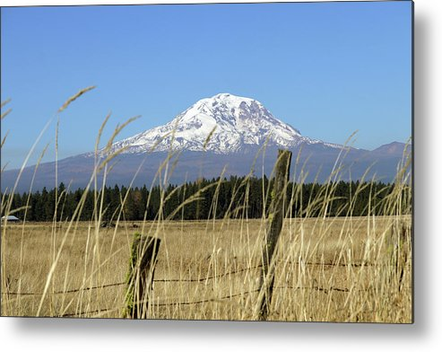 Mount Adams Pasture Land Metal Print featuring the photograph Mount Adams by Mary Masters