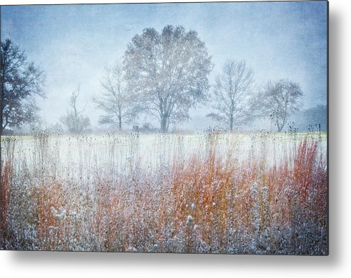 Jennifer Rondinelli Reilly Metal Print featuring the photograph Snowy Field 2 - Winter At Retzer Nature Center by Jennifer Rondinelli Reilly - Fine Art Photography