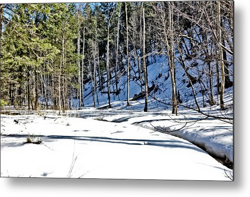 Snow Metal Print featuring the photograph Snowy Landscape by Brenton Woodruff